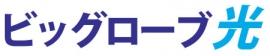 ビッグローブ光 正規販売代理店 | ライフサポート株式会社